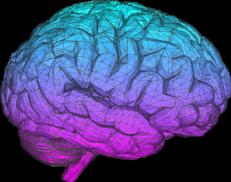 Laborator de neurostiinte